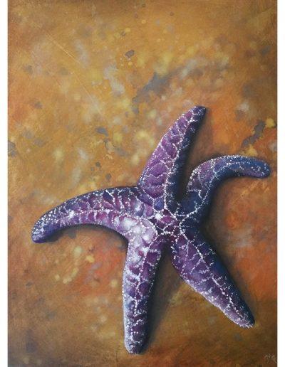Tribune Bay Stars I