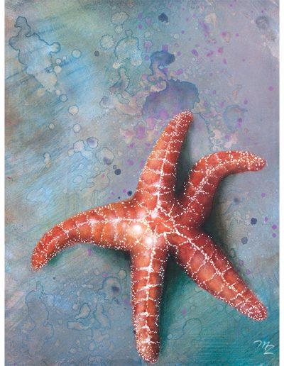 Tribune Bay Stars II